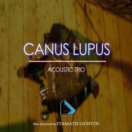 Canus Lupus acoustic trio live